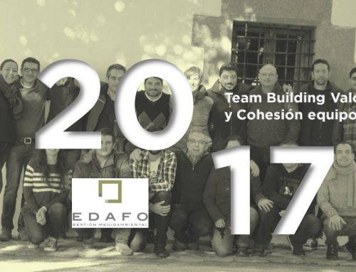 Edafo GM: Team Building Valores y Cohesión de Equipo